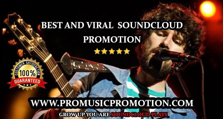 real organic music promotion USa